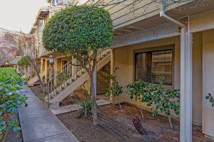 6922 Chantel Court San Jose 95129 Walkway